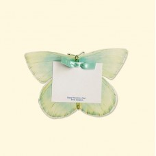 AquaGreen Butterfly