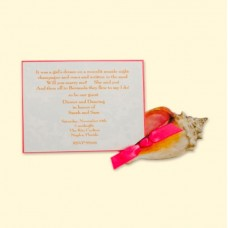 Seashell/Conch Card
