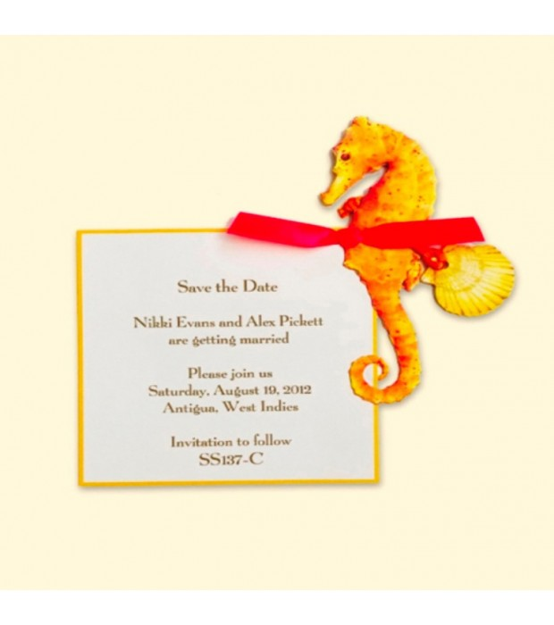Seahorse Coral Card