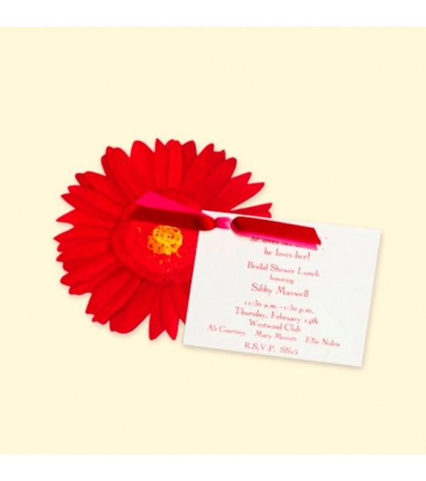 Red Gerber Daisy Card