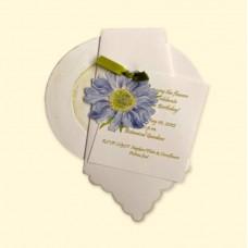Napkin/Plate, Spring w/Cornflower