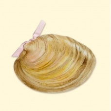 Clam Invitation Card